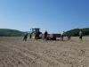 Zber kameňov z poľa, brigáda pre Poľnohospodárske družstvo Sedlice, máj 2018
