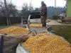 Zaobstaranie a dovoz jadrového krmiva, november 2017