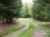 Zelenou cestou...