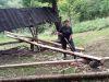 Príprava dreva na nový senník v Bykovskej doline, september 2020