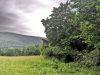 Úprava okolia posedov, kosenie trávy a prerezávka, Bykovec, jún 2020